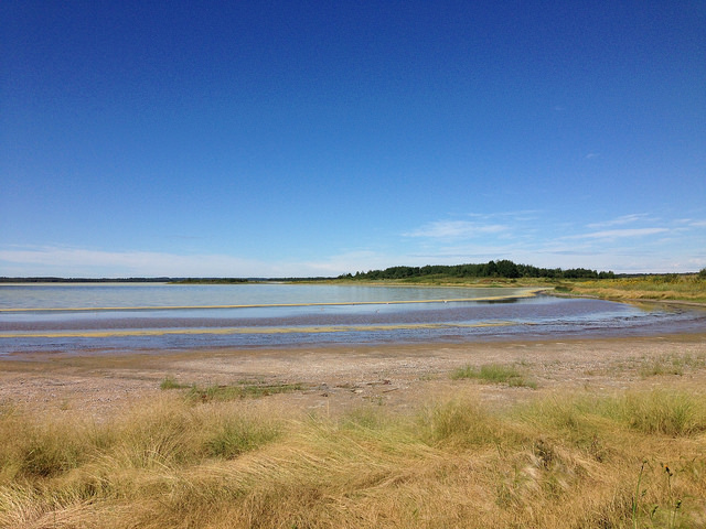 Miquelon Lake