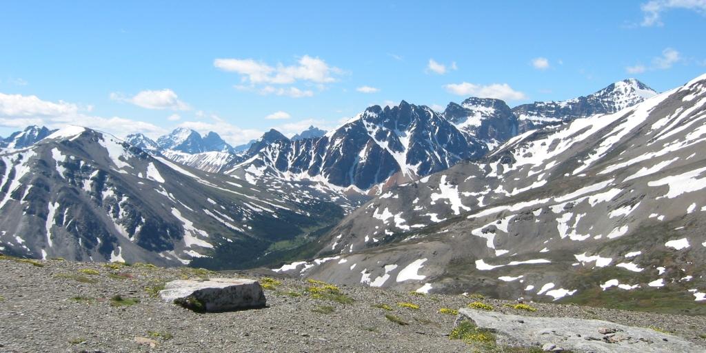 Mount Whistler Jasper
