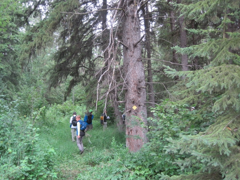 Fort Ethier trail section