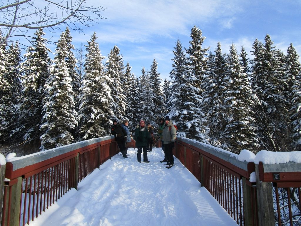 Whitemud Creek bridge
