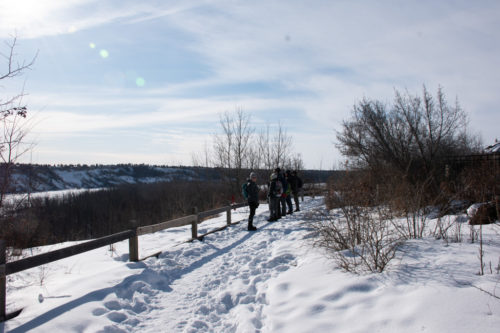 Awesome sunshine at the edge of the North Saskatchewan River Valley